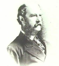 Anthony Musgrave (1828-1888), by unknown photographer, c1875